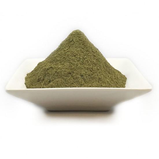 Mimosa Pudica (Sensitive Plant) Powder 2021 Fresh
