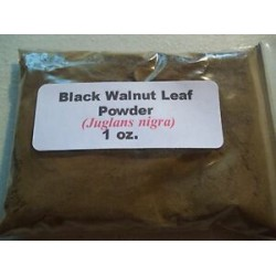 Black Walnut Leaf Powder (Juglans nigra) 1 oz.