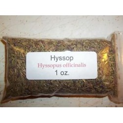 1 oz. Hyssop  (Hyssopus officinalis)