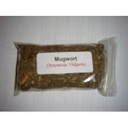 1 oz. Mugwort (Artemesia Vulgaris)