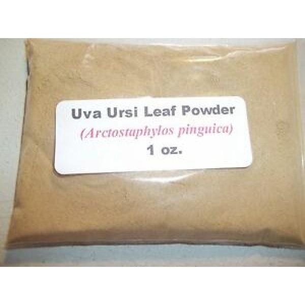 Uva Ursi Leaf Powder (Arctostaphylos uva ursi) 1 oz.