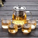 Herbal Tea Infuser  Borosilicate Tea Glass Maker with Removable 304 Stainless Steel Infuser for Blooming and Loose Leaf, Stovetop Safe - 450ML