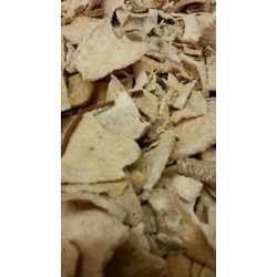 Huereque  (Ibervillea sonorae, guareque, wareki, choyalhuani, wereke, big root, coyote melon, cowpie plant)  450g