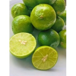 Fresh Key Limes with seeds 3lbs