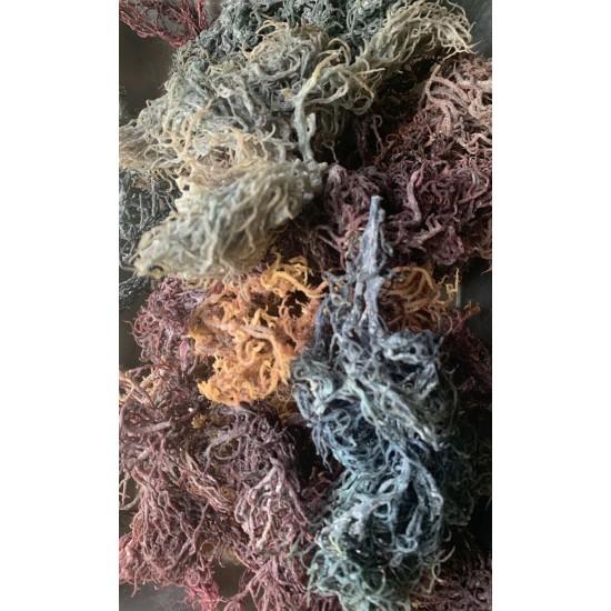 "Sea Moss Raw ""Irish"" Sea Moss-Full Spectrum- organic, wild crafted, 5 Lbs"