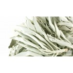 """White Sage Smudge Stick 4"""" - 5""""  2 pack, Herb House Cleansing Negativity Removal- Remove Negative Energy"""