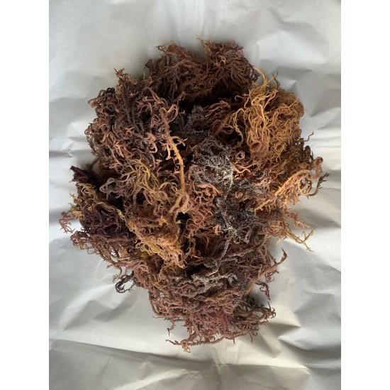 Sea Moss Wholesale  - Full Spectrum - Business Package 44lbs/20kg