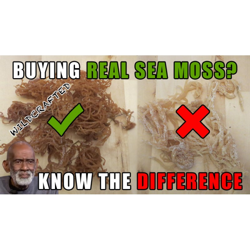 Sea Moss/Irish Moss 100% Natural Dried Wild-Crafted- (Dr