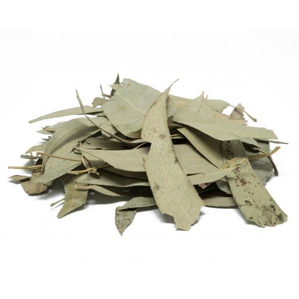 Eucalyptus Leaves (4 oz.)