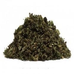 Jamaica Guaco (Mikania guaco, Mikania glomerata, guace, 4oz