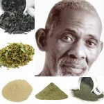 Chlorophyll Green Food Package (Similar to Dr. Sebi's Green Food Plus) Nopal Powder, Nettle Powder, Linden, Bladderwrack & Sea Moss Powder