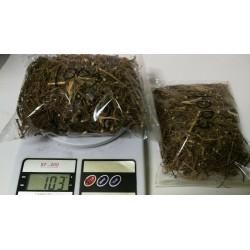 Sensitiva (Mimosa sensitiva, Mimosa pudica)  Mimosa Hostilis MHRB Root Bark 56/100g