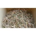 Sensitiva (Mimosa sensitiva, Mimosa pudica)  Mimosa Hostilis MHRB Root Bark 3oz 3-4 Weeks Delivery