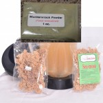 Sea Moss Irish Moss Dried 2 3oz Packs & 28g Bladder-wrack Powder- For Person with Hashimoto's, Hypothyroidism, Graves , Goiter or  Thyroid Problems