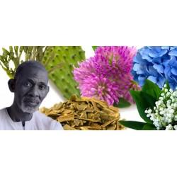 Alkaline Herbal Medicine, Reverse Disease and heal the