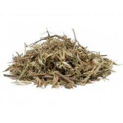 Yerba Santa Leaf  (Sapo, Eryngium carlinae, yerba del sapo, hierba del sapo, grass frog, grass toad) 28 /450g